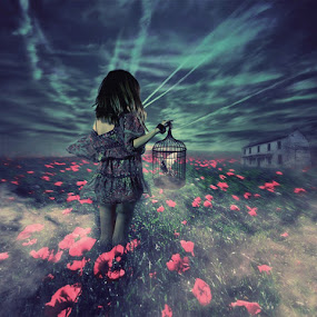 Lost and Found by Diana Grigore - Digital Art People ( bird, girl, bird cage, poppy, cage, house )