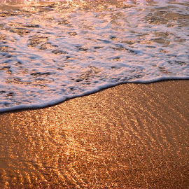 Golden Sands by Charmini Delgoda - Nature Up Close Sand ( water, sand, reflection, waves, beach )