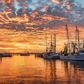 Dock of the Bay by Shutter Bay Photography - Landscapes Sunsets & Sunrises ( colorful, waterscape, sunset, boats, landscapes, docks )