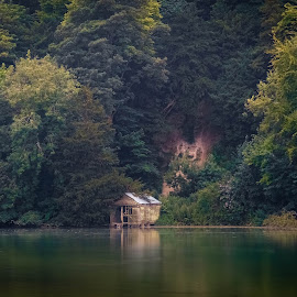 House by the lake 2 by Bela Paszti - Landscapes Waterscapes ( water, arundel, england, uk, tree, forest, house, landscape,  )