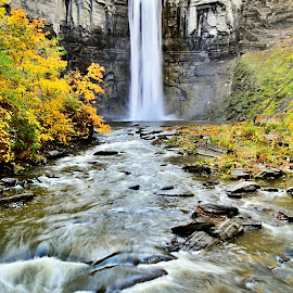 Taughannock Falls  by Travis Houston - Landscapes Waterscapes