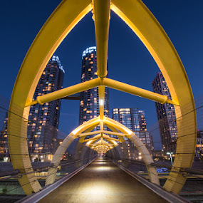 Toronto Walkway by William Ducklow - City,  Street & Park  City Parks ( william david photography )