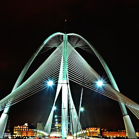 Putrajaya Bridges by Nunsyinrayakaf Ainzalmimya - Buildings & Architecture Bridges & Suspended Structures