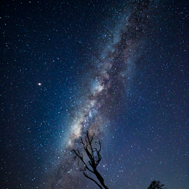 by Lawrence Chung - Landscapes Starscapes