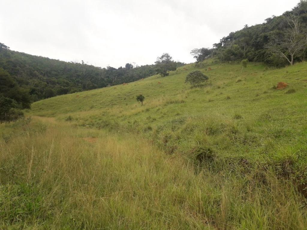 Fazenda / Sítio à venda em Werneck, Paraíba do Sul - RJ - Foto 2