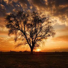 Autumn Sunset by Linda Karlin - Landscapes Sunsets & Sunrises ( autumn, sunset, landscape )