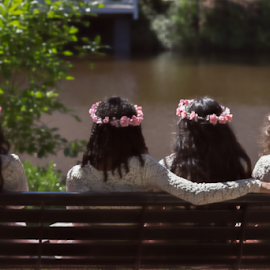 Sisterhood by Janice Mcgregor - Wedding Groups ( water, canon, wedding photography, headshot, canon sl1, ceremony, young, women, sitting, wedding, trees, sunshine, sunny day, canon photography, arm, flowers, from behind, outside )