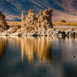 Mono Lake Rocks by Craig Turner - Landscapes Waterscapes ( ca, formations, rock, lake, mono )