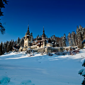 Peles Castle by Claudiu Bichescu - Landscapes Mountains & Hills