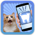 Cat Human Translator Simulator APK for Bluestacks
