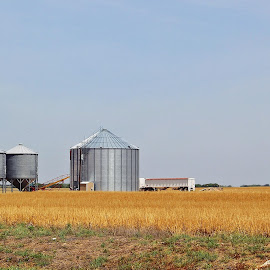 Rural Texas by Tony Huffaker - Landscapes Prairies, Meadows & Fields ( field, farm, texas, buildings, rural, crop )