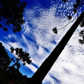 Campos do Jordão SP Brazil  by Marcello Toldi - Landscapes Cloud Formations