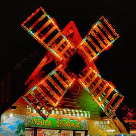 Wind mill by Radu Eftimie - City,  Street & Park  Amusement Parks ( bucharest, amusement park, night, windmill )