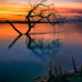 Iyok Beach by Firmansyah Goma - Landscapes Sunsets & Sunrises