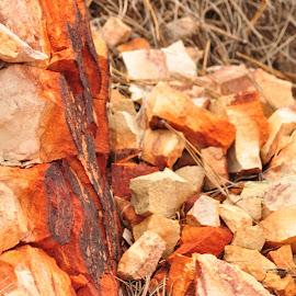 Coordination by Savannah Eubanks - Nature Up Close Rock & Stone ( rocks )