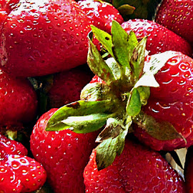 JUICY STRAWBERRIES by Wojtylak Maria - Food & Drink Fruits & Vegetables ( juicy, sweet, red, fruits, strawberries, ripe, delicious,  )