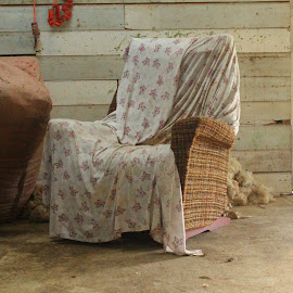 A seat a covered by Russell Benington - Artistic Objects Furniture ( chair, grease, nz, dirt, wool, wall, woolshed )