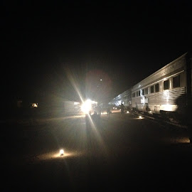 Night Time on The Nullabor by Dawn Simpson - Transportation Trains ( lights, glare, night time, train, nullabor, spot light, indian pacific )