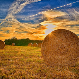 Hay Bales In The Sunset by Marco Bertamé - Landscapes Prairies, Meadows & Fields ( field, clouds, dry, sky, sun set, blue, condensation trail, yellow, hay bale )