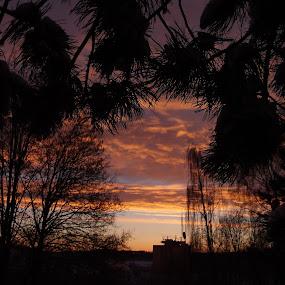 East sunshine .... by Libuše Kludská - Landscapes Sunsets & Sunrises