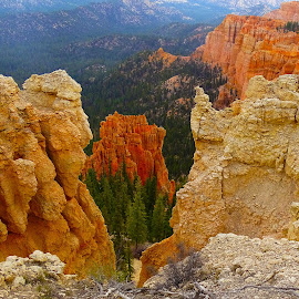Bryce Canyon V by Jane Spencer - Landscapes Caves & Formations ( overlook, national park, erosion, utah, bryce canyon )