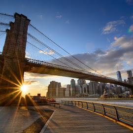 Brooklyn Bridge by Olivier Damanet - City,  Street & Park  Vistas ( brooklyn bridge, sunset, new york )