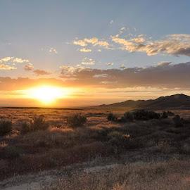 desert sunset by Bobbie Grover - Landscapes Sunsets & Sunrises