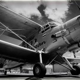 Just love.... by Arisha Singh - Transportation Airplanes ( b&w, plane, biplane, propellor, antonov ii )