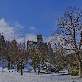 Bran Castle by Agatanghel Alexoaei - Buildings & Architecture Public & Historical