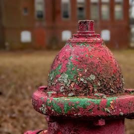 Red Cap by Roy Walter - Artistic Objects Industrial Objects ( firehydrant, old, artistic objrct, neglect, paint )