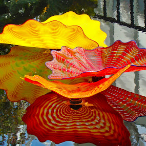 Glass Flowers Reflected by Dee Haun - Artistic Objects Glass ( orange, 2007, phipps conservatory, reflections, pennsylvania, yellow, pittsburth, glass art, glass flowers, chihuly, red, highly colored, artistic objects,  )