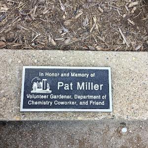 In Honor and Memory ofPat MillerVolunteer Gardener, Department ofChemistry Coworker, and Friend