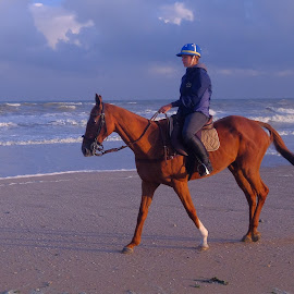 riding at sunrise by Fred Goldstein - Sports & Fitness Other Sports ( riding, horse, france, beach, sunrise, deauville )