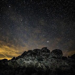Joshua Tree by Jim Hamel - Landscapes Starscapes ( mountain, stars, california, joshua tree, night )