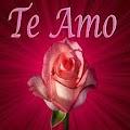 App Flores con Frases de Amor APK for Windows Phone