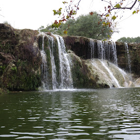 Turkey Creek Falls by Colin Toone - Instagram & Mobile Android ( water, waterfall, lake, rock, pond )