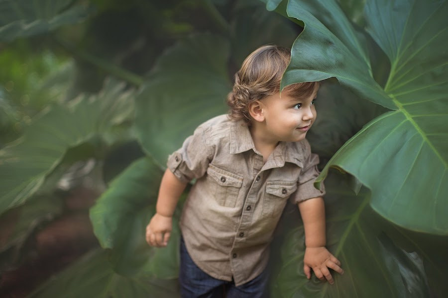 Peeking by Nemanja Stanisic - Babies & Children Toddlers ( handsome boy, big leaves, peeking, big boy, big leaf, candid, leaves, cute, cute boy, nature, little boy, peek, little man, handsome, boy )