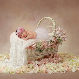 Baby Jenique by Ellen Strydom - Babies & Children Babies ( composition, baby, newborn phography, newborn, photography )