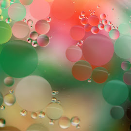 Floating Reflections by Janet Herman - Abstract Macro ( water, abstract, macro, floating, reflections, water and oil, oil )