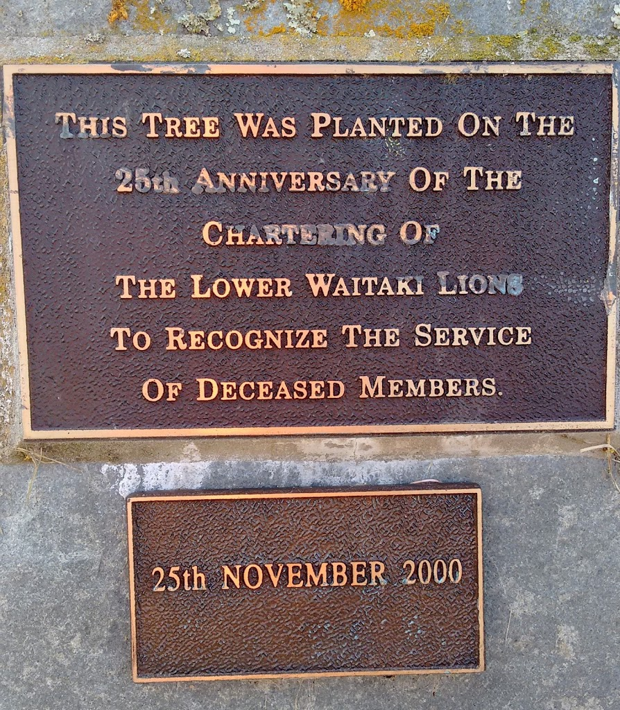 Transcript:This tree was planted on the 25th anniversary of the chartering of the Lower Waitaki Lions to recognize the service of deceased members.25th November 2000Submitted by:Judith Swan