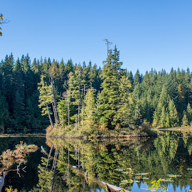 Alice Lake by Laura Chapple - Landscapes Travel ( reflection, canada, autumn, trees, british columbia )