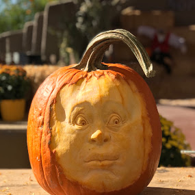 by Denise Armstrong - Public Holidays Halloween