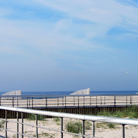 by Joan McKenna Mertens - Landscapes Beaches
