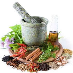 THE BEST MEDICINAL PLANTS
