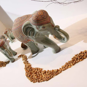 In Line by Pom Wanchart - Artistic Objects Other Objects