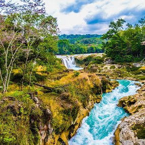 Cascadas las nubes (chiapas, mexico) by Alighieri Rizo - Landscapes Mountains & Hills ( agua, arboles, mexico, chiapas, rios, azul, montaña, naturaleza,  )