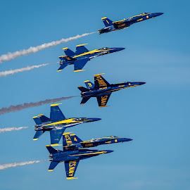 Blue Angels by Dave Lipchen - Transportation Airplanes ( blue angels )