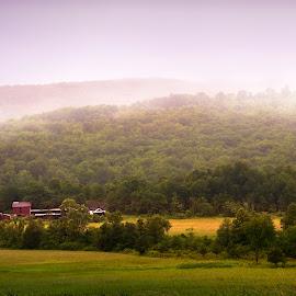 Misty Mountain by Sandra Hilton Wagner - Landscapes Prairies, Meadows & Fields ( field, farm, mountain, farm house, trees, brush, landscape, mist )