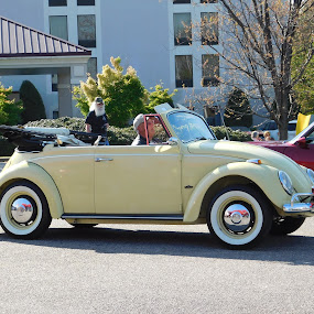 Car show in Chester, VA. by TONY LOPEZ - Transportation Automobiles ( virginia, usa, volkswagen,  )