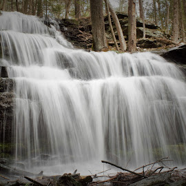 Gunn Rd. Waterfall by Monroe Phillips - Nature Up Close Water